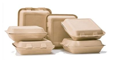 Biodegradable Food Packaging An Eco Friendly Alternative For The Food Industry